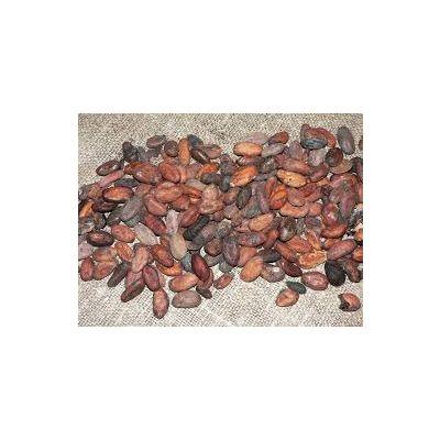 Cocoa Bean | Wholesale | Sub Standard (SS) Grade