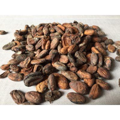 Cocoa Bean - Retail | Sub Standard (SS) Grade